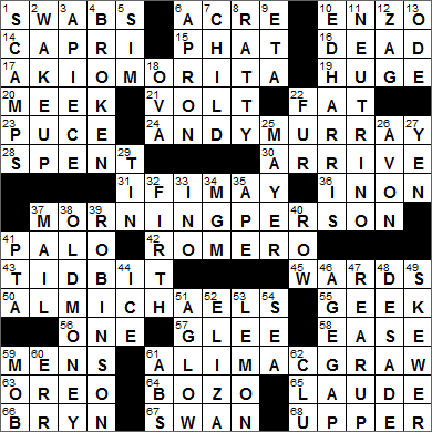 0720-15 New York Times Crossword Answers 20 Jul 15, Monday